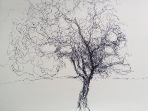 magnolia in fineliner